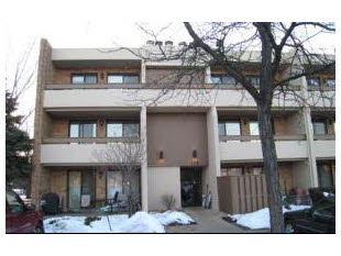 178 E SPRINGBROOK Drive Unit 2A, Bloomingdale 60108